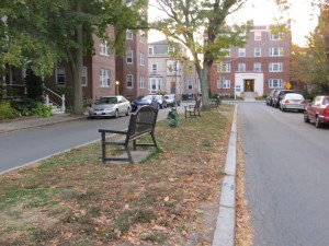 benches on Median Strip outside Harvard Square